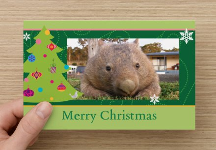 Green Wombat Christmas card